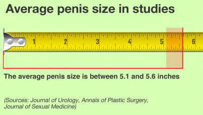 average-penis-size-in-studies.png