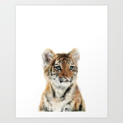 Little Tiger by Amy Hamilton
