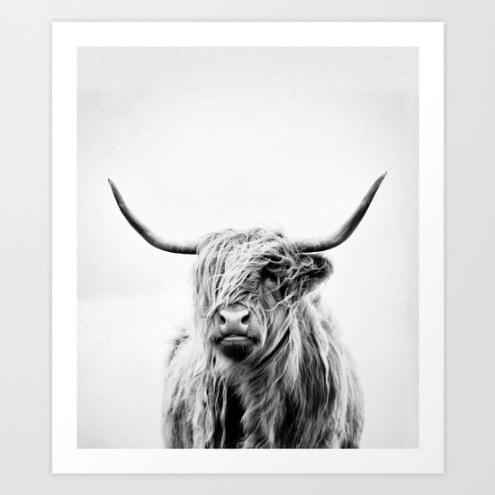 Portrait of a highland cow vertical orientation by Dorit Fuhg